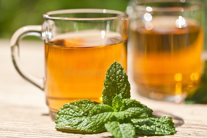 Herbal peppermint tea closeup macro outdoor summer royalty free stock images