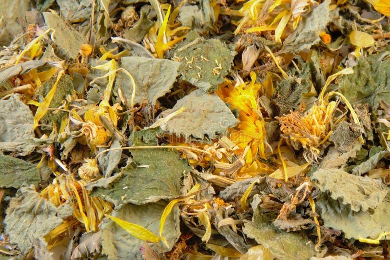 Herbal stomach support tea background. Background filled with herbal stomach and bowel supporting tea. ingredients: lemon balmleaf, spearmint leaf, chamomile stock photos