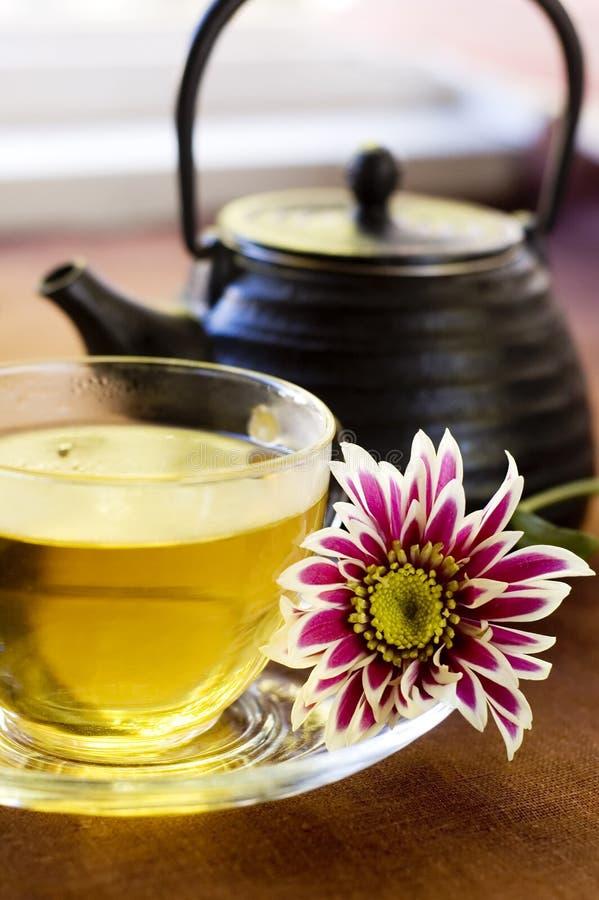 Free Herbal Tea Royalty Free Stock Image - 20354836