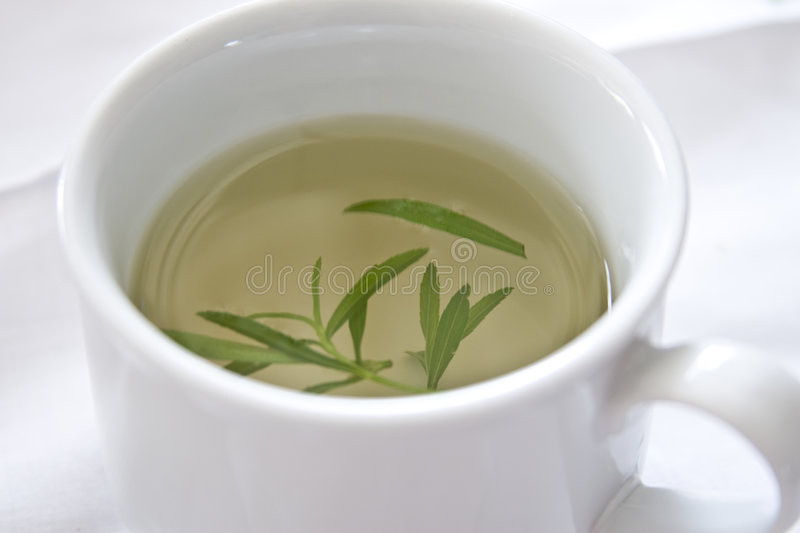 Download Herbal Tea stock photo. Image of healthy, ceramic, chinese - 4387014