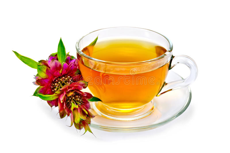Herbal tea with bergamot. Herbal tea in a glass cup, fresh bergamot flower with a light shade on white background stock images