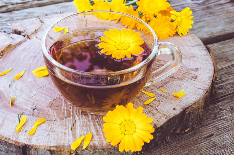 Herbal tea from calendula flowers in a transparent glass mug. Extract of tincture of calendula in the cup stock photos