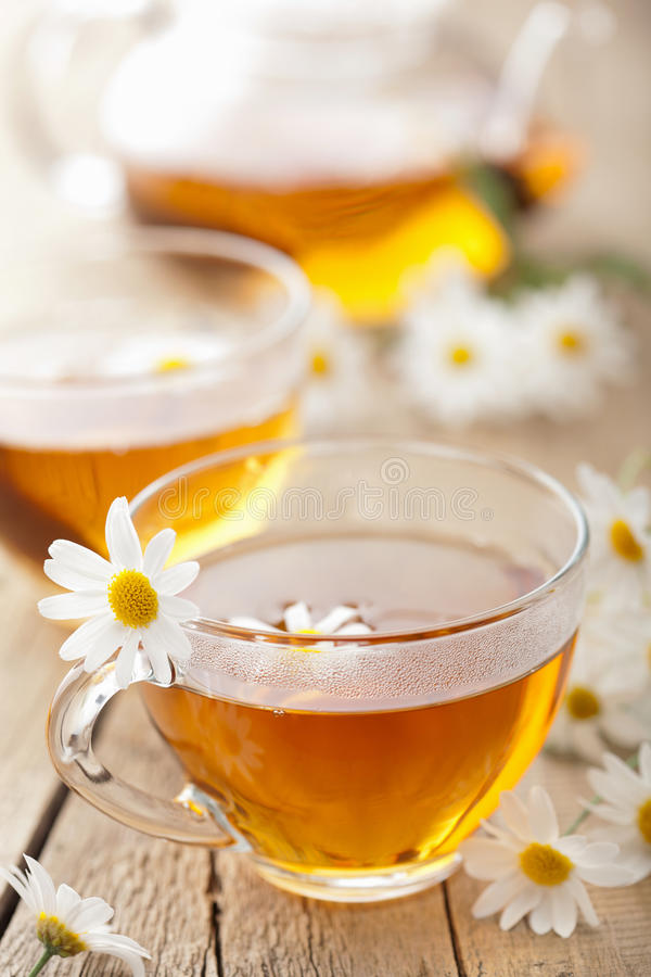 Herbal tea with chamomile flowers royalty free stock images