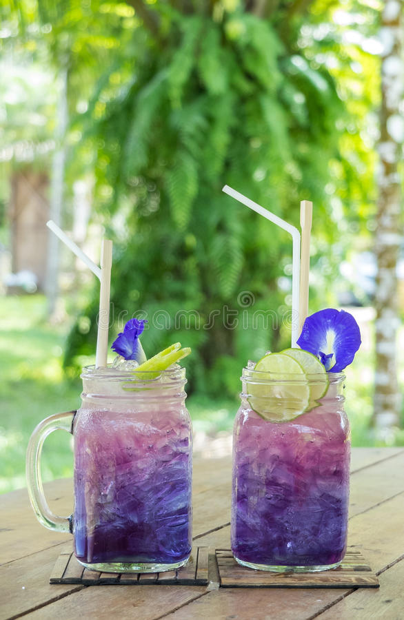 Herbal Tea Drinks in The Green Park Concept, Couple Glasses of Gradient Purple Butterfly Pea Juices Decorated with Flowers stock images