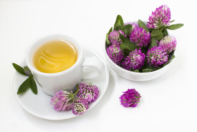 Herbal tea with flowers of clover. Herbal tea in a white mug and saucer with flowers clover stock photos