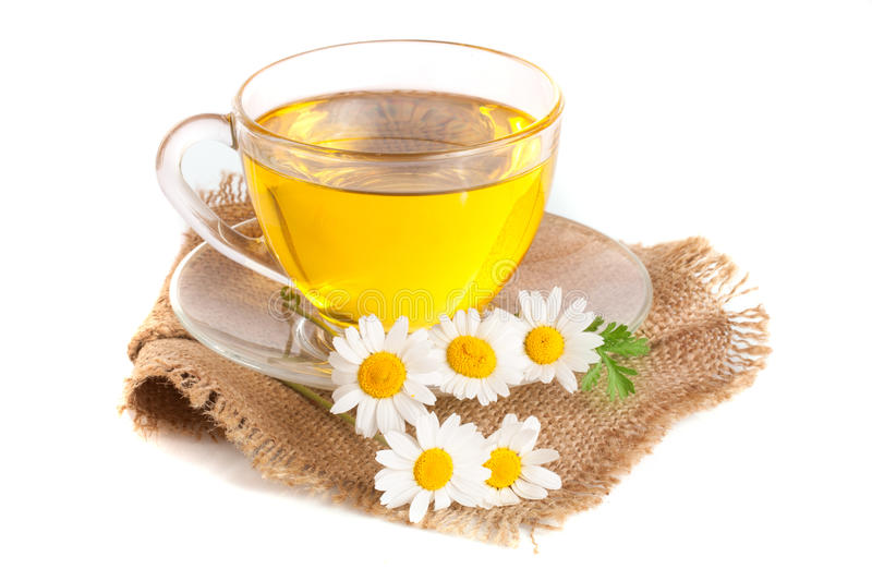 Herbal tea with fresh chamomile flowers on sackcloth isolated on white background.  stock image