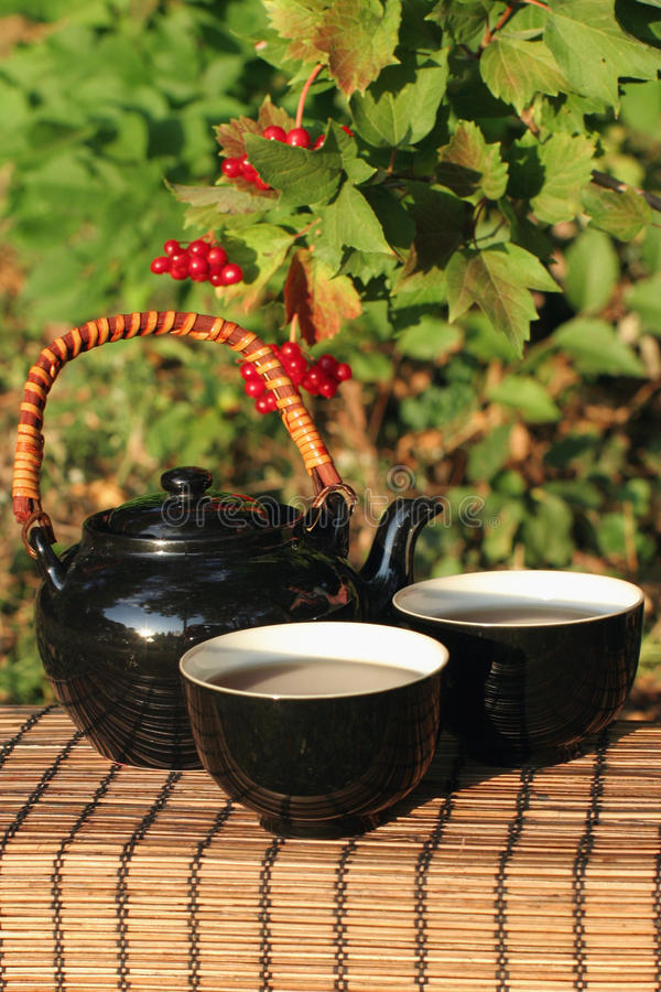 Download Herbal tea  in a garden stock photo. Image of bright - 11141432
