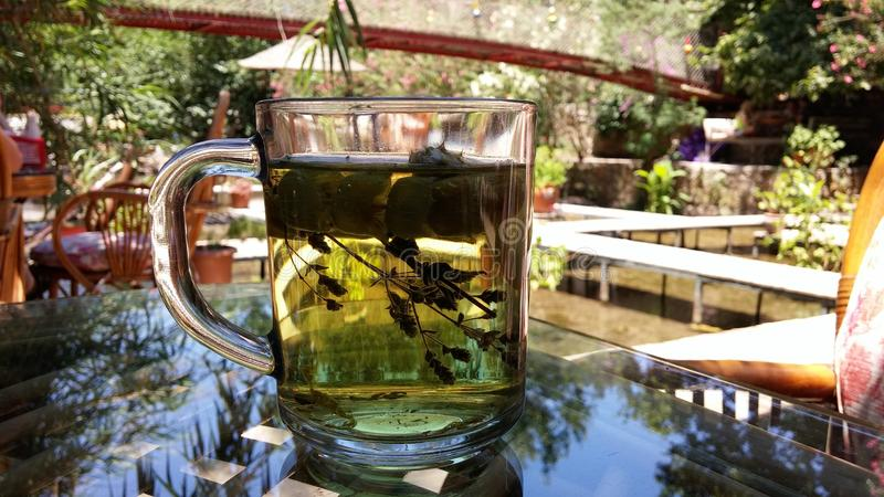 Herbal tea in glass on the table with reflection. Adrasan Turkey green terrace under river stock images