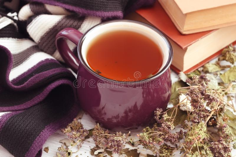 Herbal tea homemade with cozy scarf and books for reading stock photography