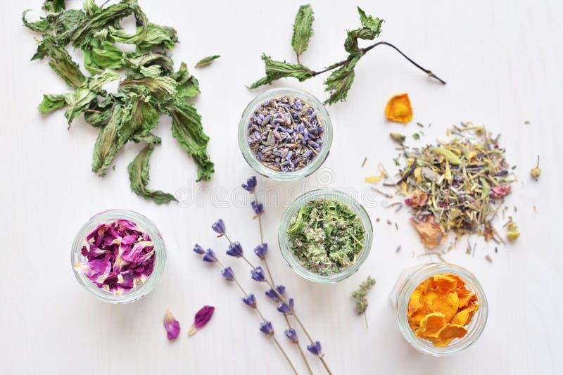 Herbal tea natural ingredients royalty free stock images