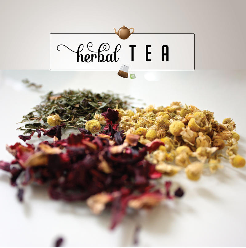 Herbal tea photo with text and doodles royalty free stock photo. For greeting card, ad, promotion, poster. Perfect for flier, blog, article, social media royalty free stock images