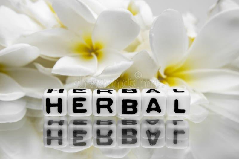 Download Herbal stock photo. Image of border, herb, leaf, frame - 41045524