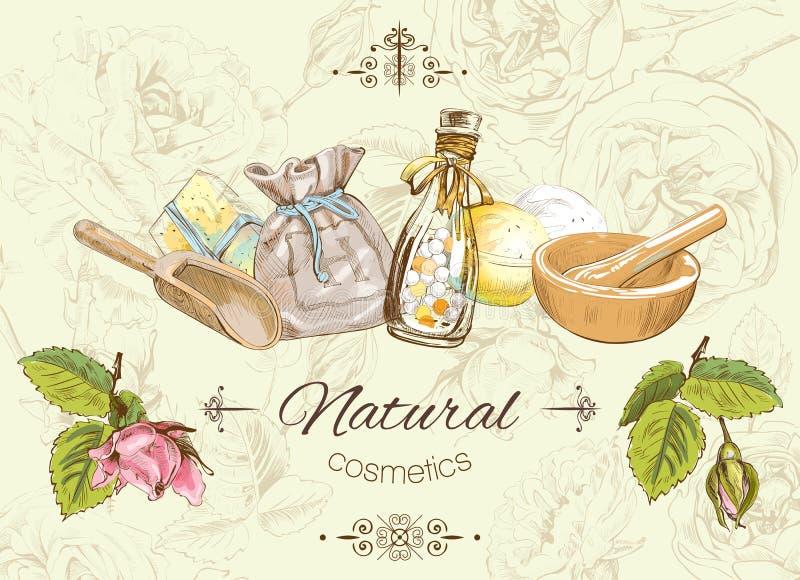 Herbal vintage banner vector illustration