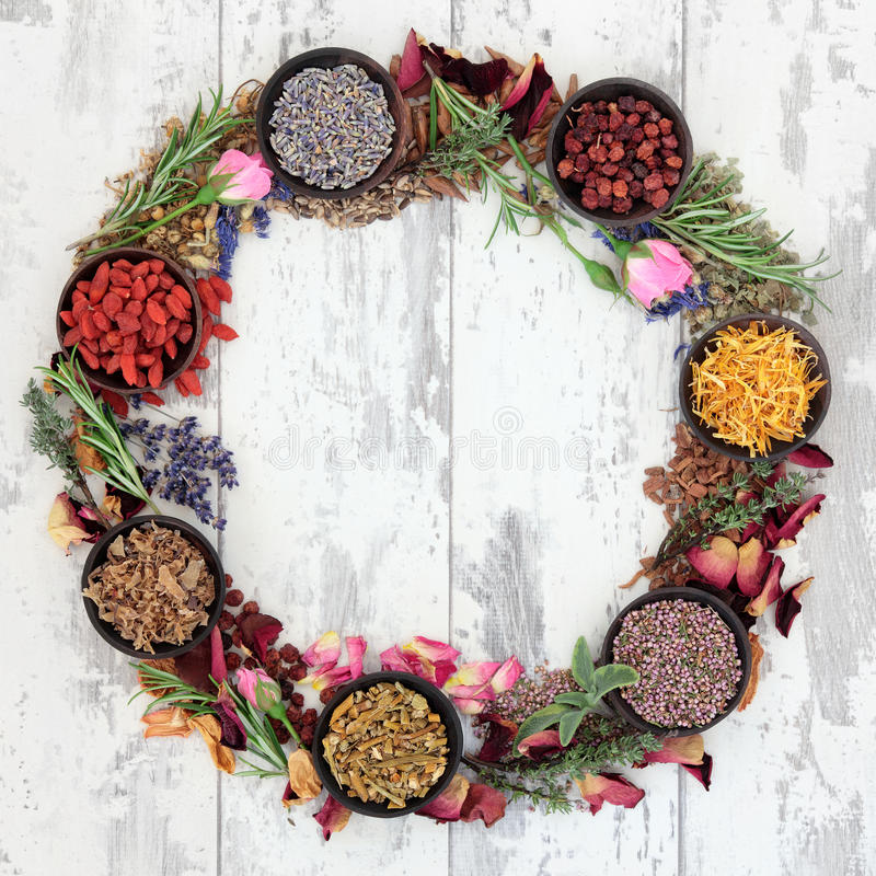 herbal wreath stock image image of lavender garland 36398965