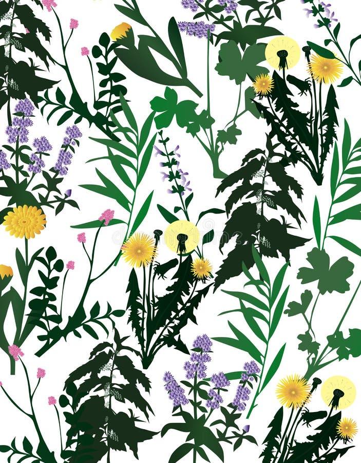 Free Herbarium Royalty Free Stock Photos - 14042618