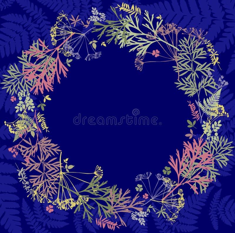 Herbarium med vildblommor, filialer, sidor i en cirkel Botanik på en blå bakgrund, hälsningkort, krans royaltyfri illustrationer