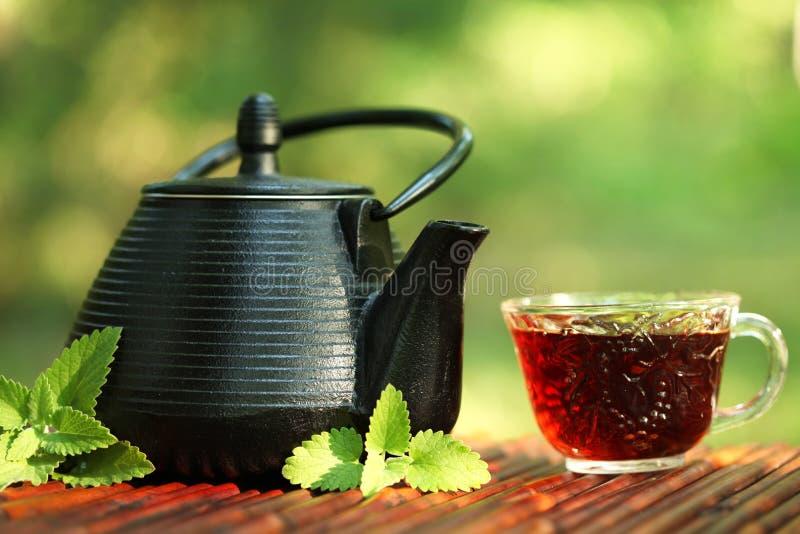 Download Herbata zdjęcie stock. Obraz złożonej z woda, świeżość - 19916732