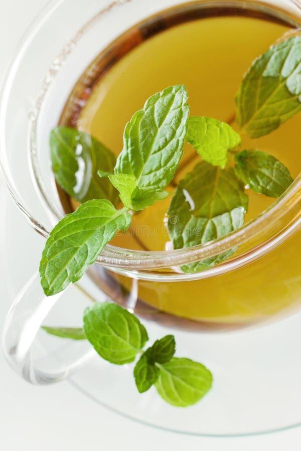 Herbata w szklanej filiżance z cytryną i świeżymi nowymi liśćmi - ziołowy h obrazy stock