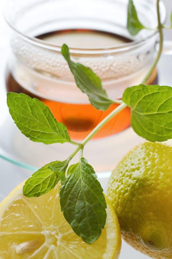 Herbata w szklanej filiżance z cytryną i świeżymi nowymi liśćmi - ziołowy h fotografia royalty free