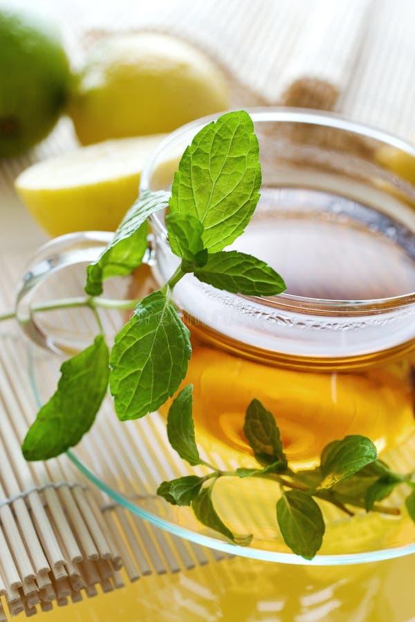 Herbata w szklanej filiżance z cytryną i świeżymi nowymi liśćmi - ziołowy h zdjęcia stock