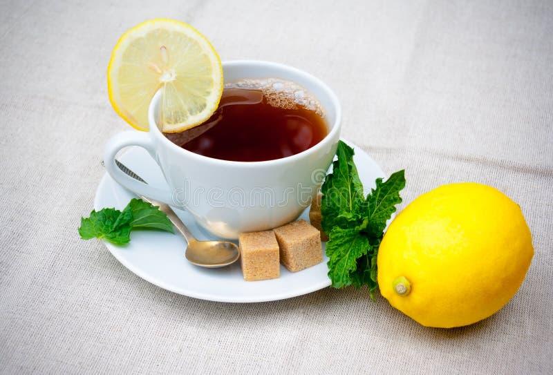 Herbata z mennicą, brown cukierem i cytryną na stole, zdjęcie stock