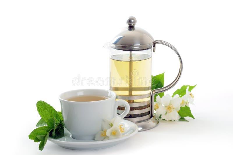 herbata ziołowa obraz royalty free
