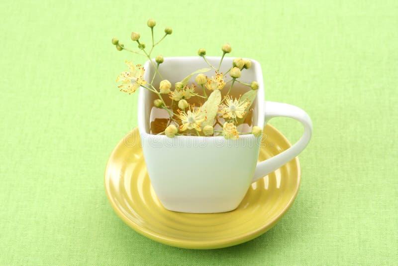 herbata ziołowa zdjęcie royalty free