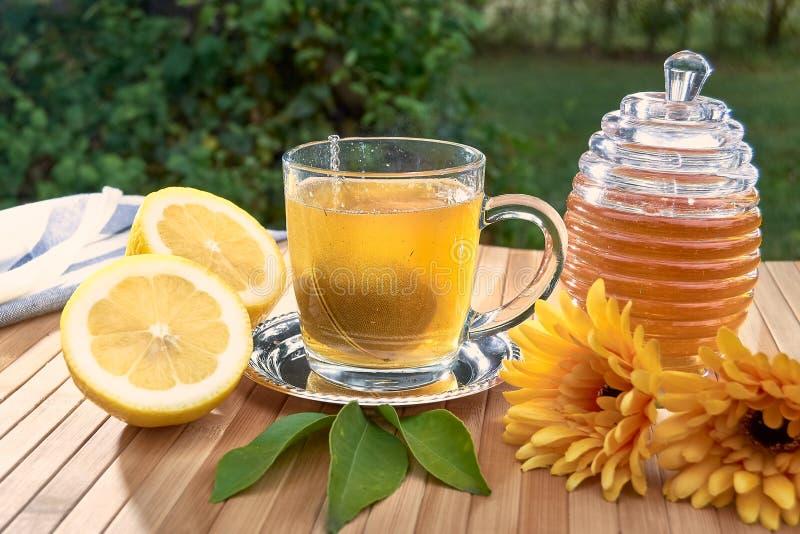 Herbaty filtrowa piłka spada w szkło gorąca woda fotografia royalty free