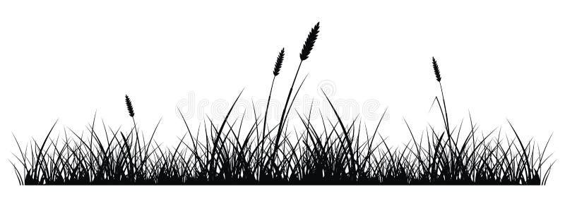 Herbe illustration stock