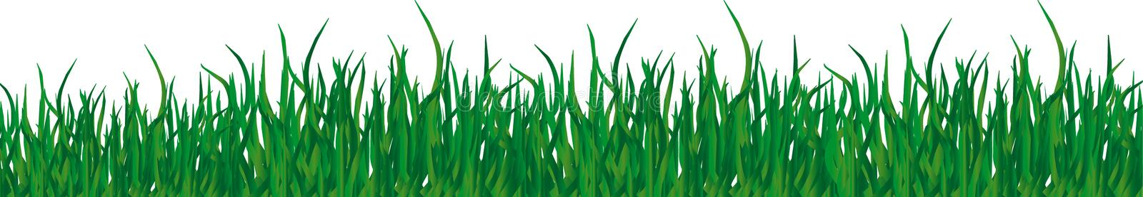 Herbe illustration stock