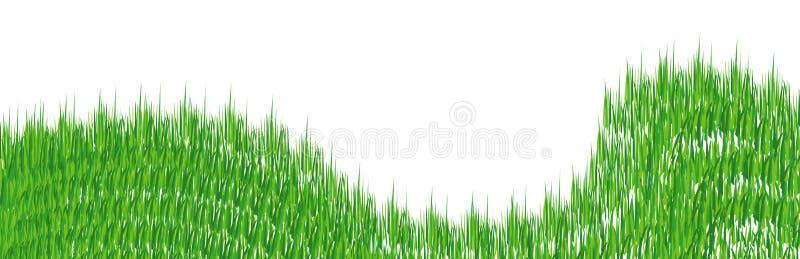 herbe illustration libre de droits