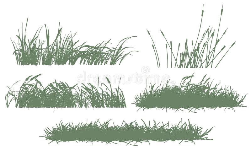 Herbe illustration libre de droits