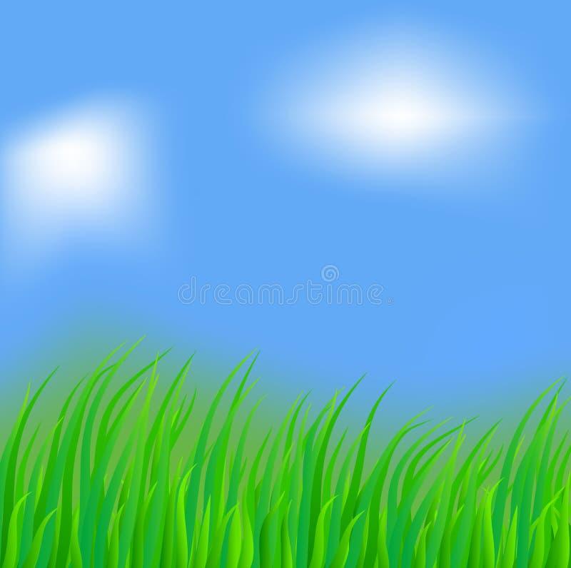 Herbe abondante. illustration de vecteur
