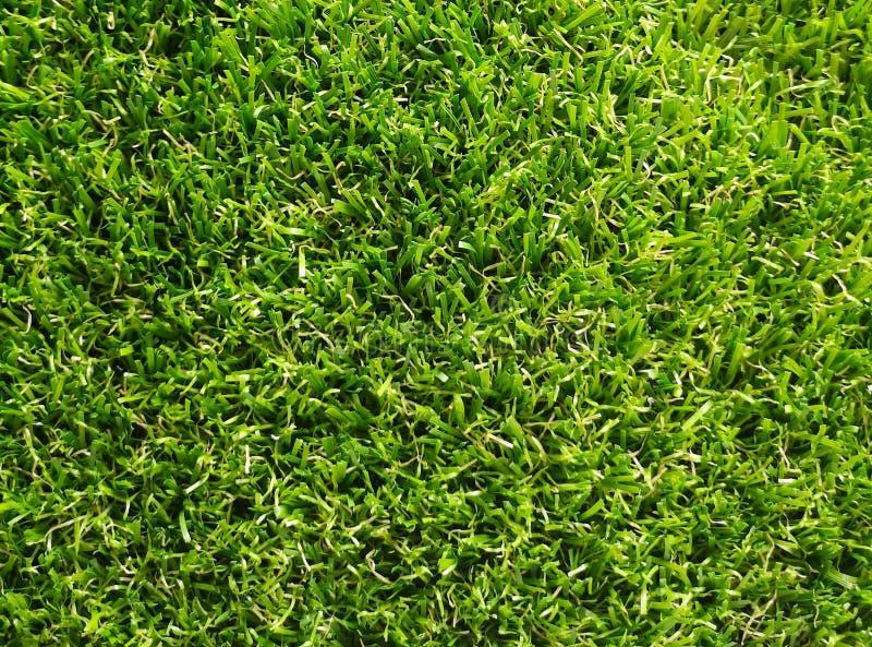 Herbe artificielle avec la couleur verte photos libres de droits