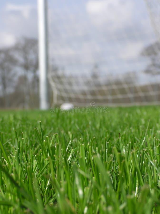 Download Herbe Avec Le Filet Du Football Image stock - Image du boucle, ciel: 737545