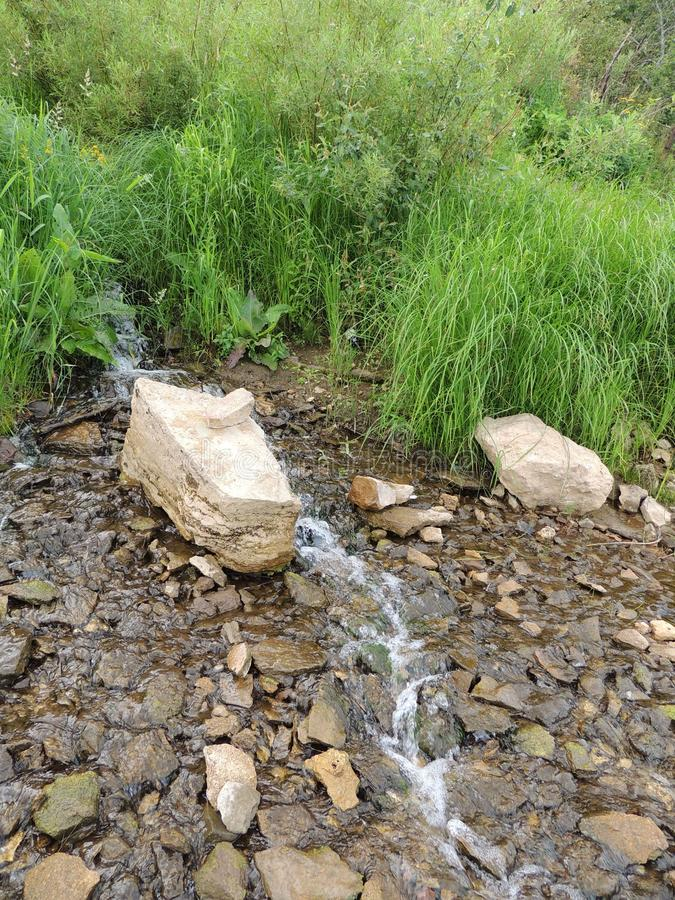 Herbe courante de pierre de ruisseau de Hillside images stock