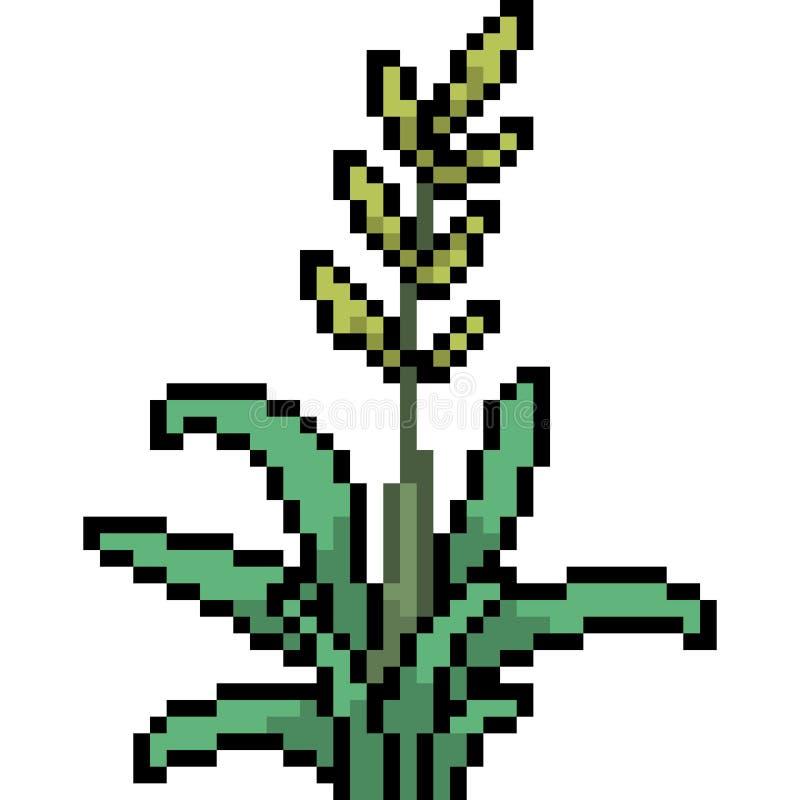 Herbe d'art de pixel de vecteur illustration libre de droits