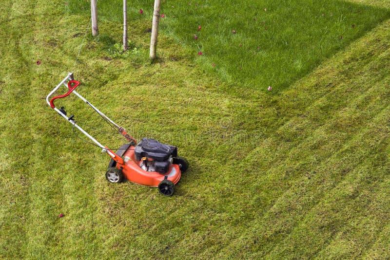 Herbe de coupe de tondeuse à gazon sur le champ vert dans la cour Outil de fauchage de travail de soin de jardinier photographie stock