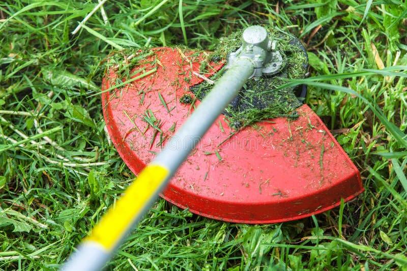 Herbe de fauchage sur le plan rapproché de pelouse photographie stock libre de droits