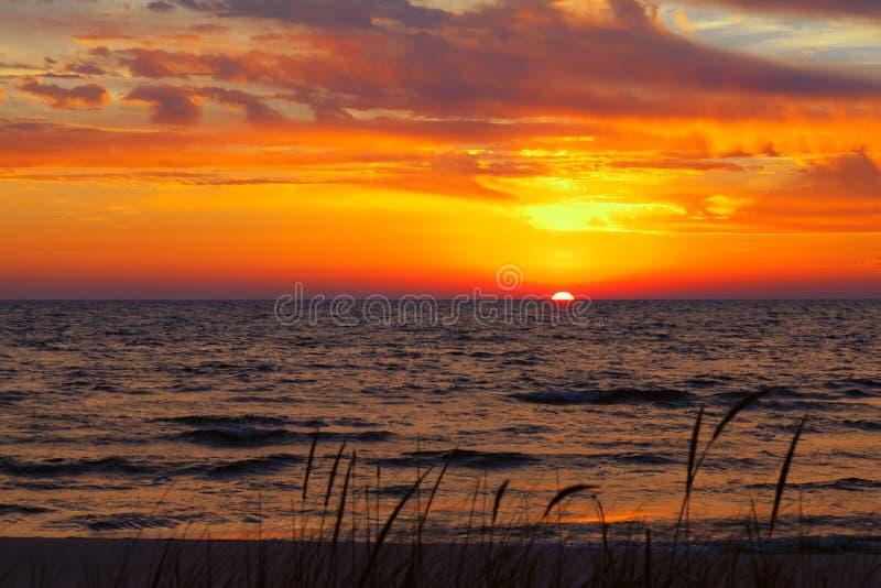 Herbe dunaire un jour d'été images libres de droits