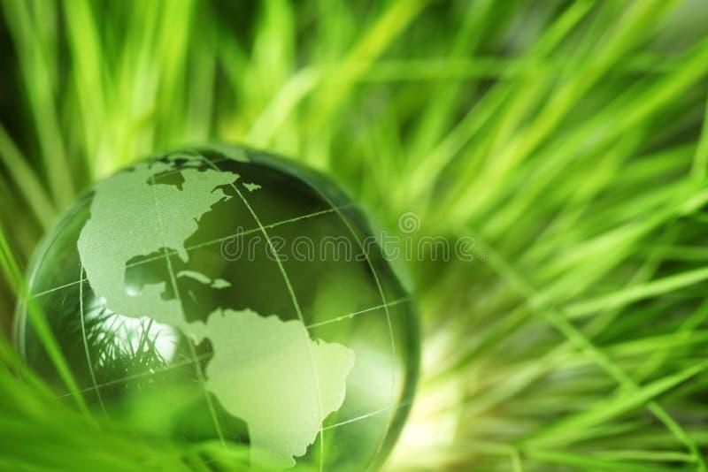 herbe en verre de globe images libres de droits