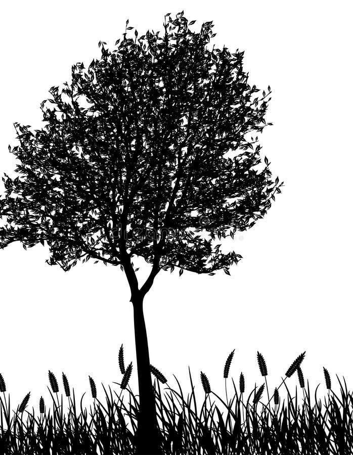 Herbe et arbre, vecteur illustration de vecteur