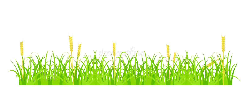 Herbe et blé illustration de vecteur