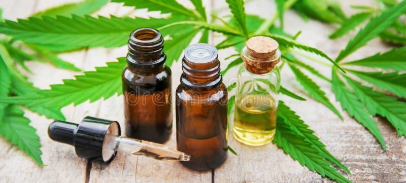 Herbe et feuilles de cannabis pour le bouillon de traitement, teinture, extrait, huile Foyer s?lectif image libre de droits