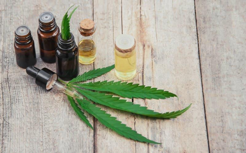 Herbe et feuilles de cannabis pour le bouillon de traitement, teinture, extrait, huile Foyer s?lectif photographie stock libre de droits