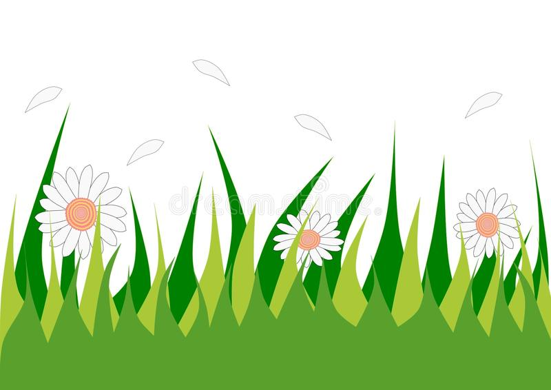 Herbe et fleur photos libres de droits
