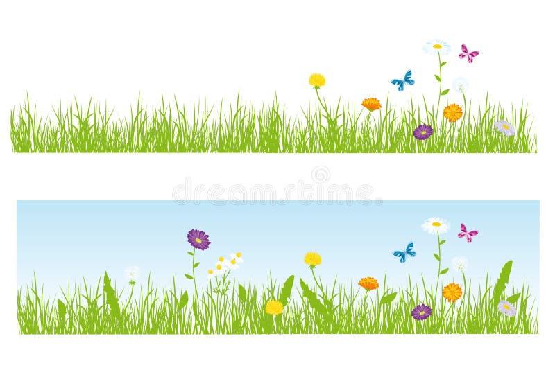 Herbe et fleurs images stock