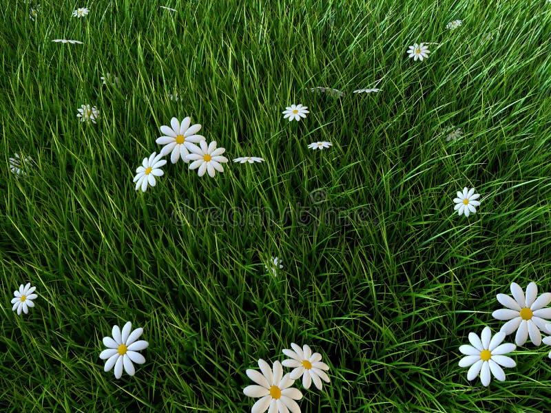 Herbe et fleurs illustration de vecteur