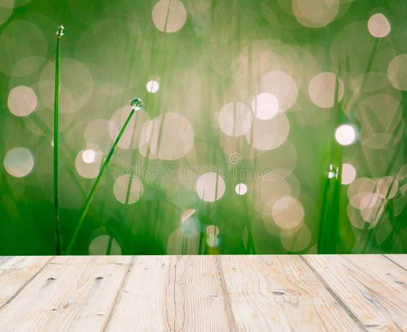 Herbe humide de printemps avec l'effet de bokeh et le plancher en bois image libre de droits