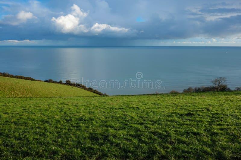 Herbe, mer, ciel photo libre de droits